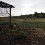 Hawk proof chicken run
