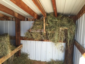 Hay rack for cows