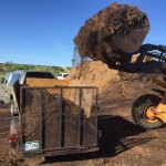 2015 free mulch from Douglas county colorado.