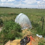 Poly tunnel Colorado July 2015